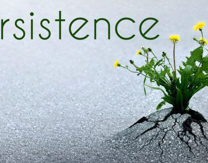 Persistence is a Virtue