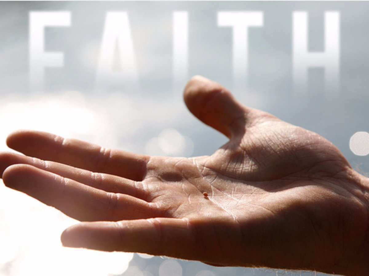 "Sunday, October 6, 2019 ""How Much Faith is Enough?"""