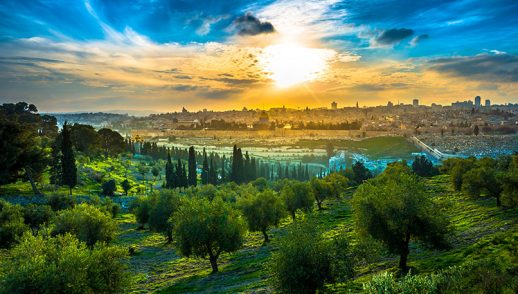 "Worship Service, August 23, 2020 ""Blood, Sweat, and Tears on the Mount of Olives"""